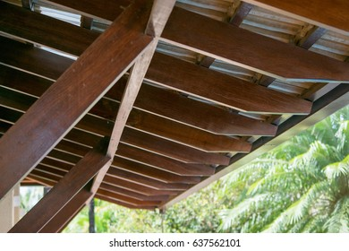 View of tropical garden roof
