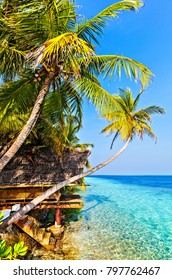 View in tropical hotel Ranveli, Maldives, The Indian Ocean