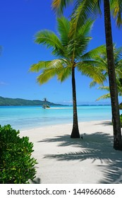 View of a tropical landscape with palm trees, white sand and the turquoise lagoon water in Bora Bora, French Polynesia, South Pacific