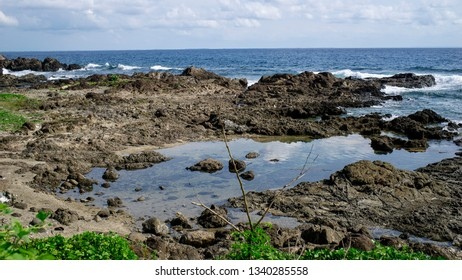 view of a tropical sunny rocky sea shore in a calm summer sea.