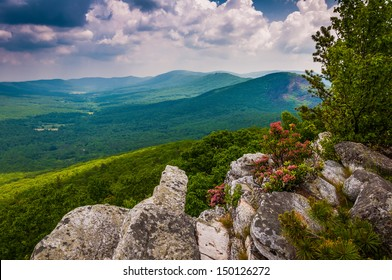 View of the Trout Run Valley from Tibbet Knob, in George Washington National Forest, West Virginia.