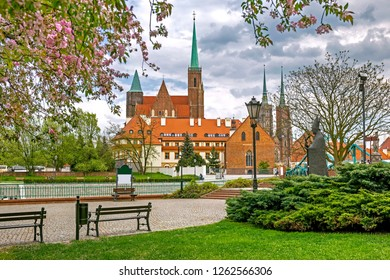 View of Tumski Island from the embankment of the Odra during blossoming in spring, Wroclaw, Poland