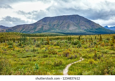 A view of the tundra next to BLM Arctic Circle Monument Sign on Dalton Highway in Alaska, USA