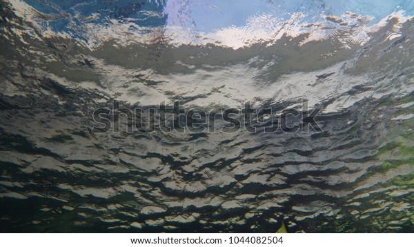 View from underwater looking upwards