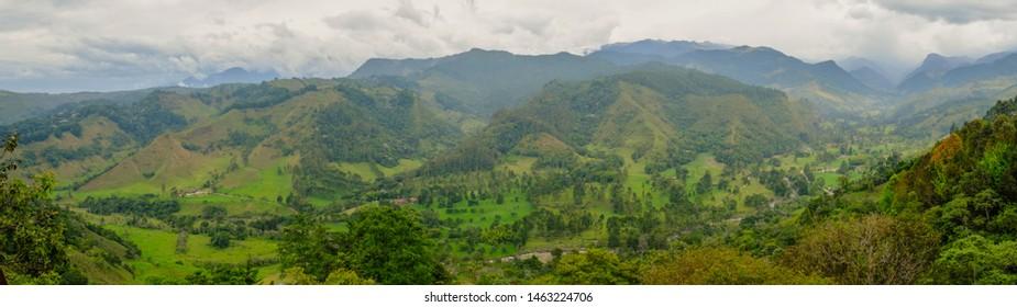 View of the Valle de Cocora, Salento, Colombia