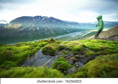View of the valley. Northern Sweden, Sarek National Park