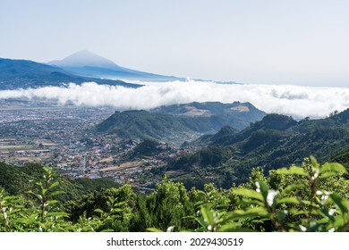 Vue sur la vallée, ancienne capitale de l'île de San Cristobal de La Laguna. Ténérife. Îles Canaries. Espagne. Vue depuis le pont d'observation - Mirador De Jardina.