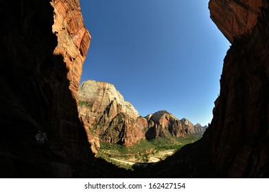 view of the valley / Zion National Park
