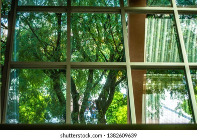 View of various windows and the view through the building: Nature, trees and roof reflection forming geometric pattern with inox steel
