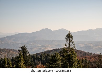 view Velky Rozsutec, Stoh and Poludnovy Grun hills in Mala Fatra mountains from Velka Raca hill in Kysucke Beskydy mountains during nice autumn day with clear sky