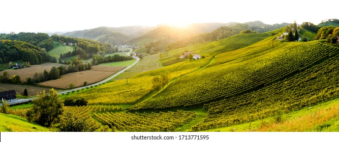 View of Vineyards and Hills, Styria, Austria