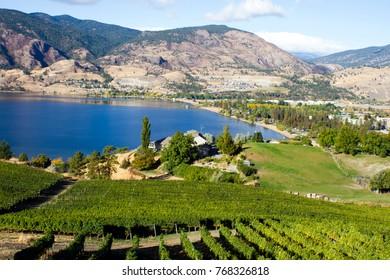 View of vineyards overlooking Skaha Lake and Skaha Beach located in the Okanagan Valley in Penticton, British Columbia, Canada.