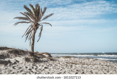 View of a virgin beach near Torrevieja Spain