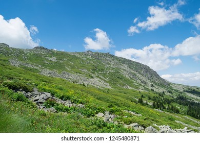 View at Vitosha mountain national park in Bulgaria