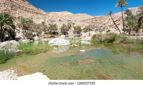 View of Wadi Bani Khalid - Omani desert - Sultanate of Oman