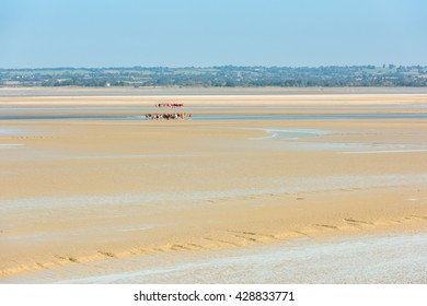 View from walls of Mont Saint Michel on the bay during the low tide with groups of tourists walking. France