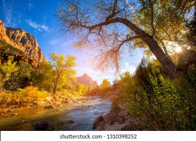 View of the Watchman mountain and the virgin river in Zion National Park located in the Southwestern United States, near Springdale, Utah, Arizona
