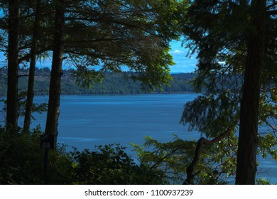 View of water seen through a break in trees