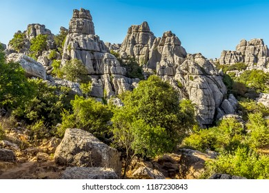 A view of weathered limestone stacks in the Karst landscape of El Torcal near to Antequera, Spain in summertime