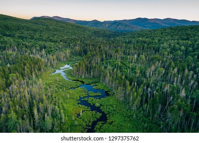 View of a wetland in the White Mountains of New Hampshire