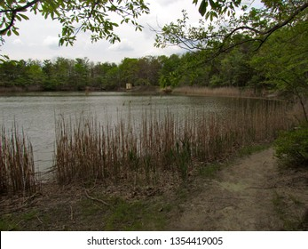 Cheesequake State Park Images, Stock Photos & Vectors