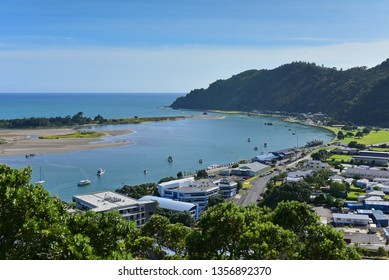Image result for whakatane free images