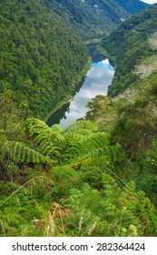 View of the Whanganui River, North Island, New Zealand