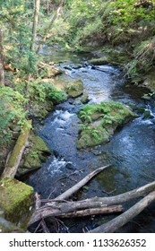 A view of Whatcom creek, with rocks and woods at Whatcom Falls Park near Bellingham, Washington