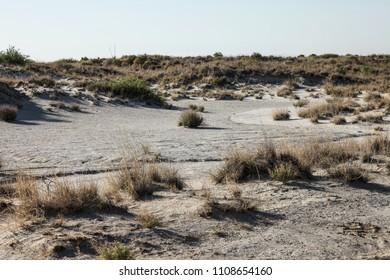 View of white alkaline soil in dry desert landscape