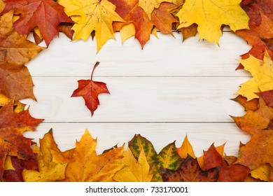 View of white wooden background with autumn maple leaves