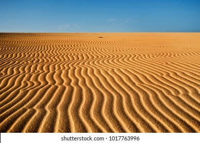 a view of the wind ripples on the sand dunes of Corralejo, Fuerteventura, in the Canary Islands, Spain