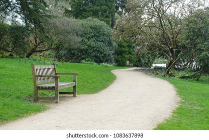 View of a Winding Path and Wooden Bench in a Beautiful Landscape Garden
