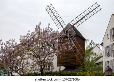 View to the windmill Moulin de la Galette (Blute-fin) and blooming tree, Montmartre, Paris, France