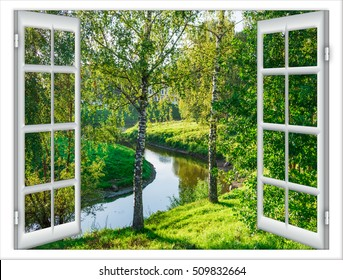 view from the window in the body of water and the tree in summer