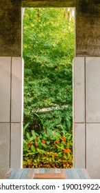 View from the window, lush foliage tropical garden