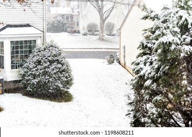 View from window on snowstorm, storm, snowing weather outside, outdoors with tree branches covered in snow in backyard, front yard with houses, road, street in Fairfax, Virginia