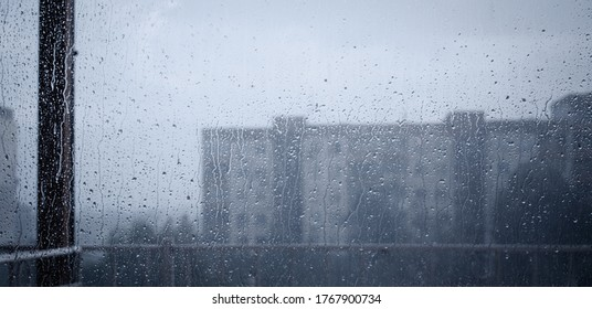 A view from a window. Rainy day