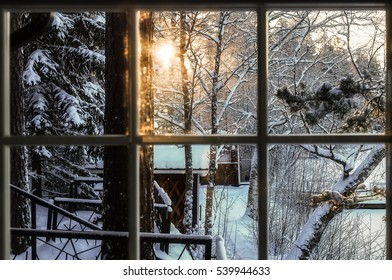 The view from the window of the sunset in the forest
