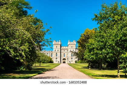 View of Windsor Castle from the Long Walk - England, the United Kingdom
