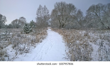 view of view winter landscape, South Bohemia, Czech Republic