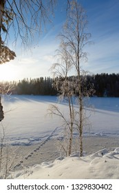 View to the wintry lake on a cold winter morning during sunrise. Winter wonderland scenery from Finland.