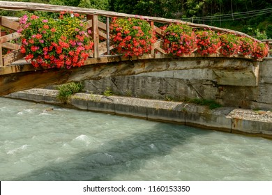 view of wooden bridge over Lys river covered with blossoming geranium flowers, shot on a bright summer day at Gressoney Saint Jean,  Lys valley, Aosta, Italy