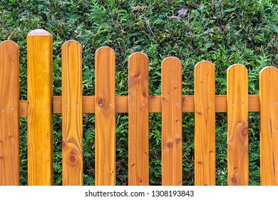 View of a wooden fence, behind it is an impenetrable hedge, conifers. Seen in Brandenburg.