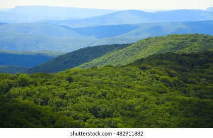 View of woody mountain range landscape.