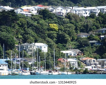 View of yachts moored in Evans Bay with hillside suburb of Haitaitai Wellington New Zealand