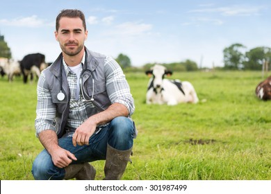 View of a Young attractive veterinary in a pasture with cows