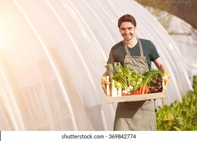 View of a Young business farmer working at the farm