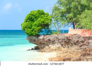 View of Zanzibar tropical beach and sea - Prison island - Indian ocean - Africa