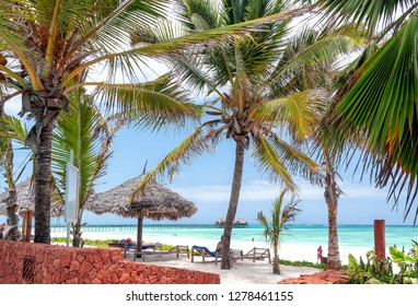View of Zanzibar tropical beach and sea - Dongwe  - Indian ocean - Africa