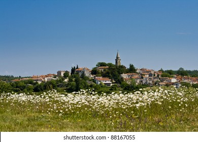 View to Zminj  and the field with the flowers